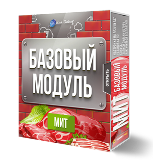 Базовый модуль МИТ